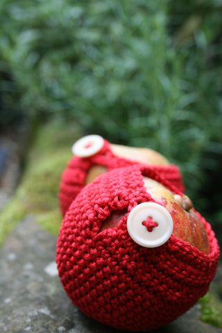 Autumn cosies