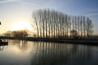 Wareham frost